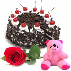 Anniversary Delight Upbeat Black Forest Cake with Rose and Small Teddy Combo