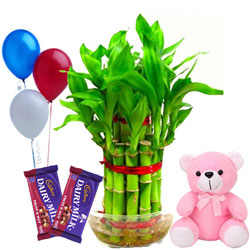 Lucky Wishes Chocolate Gift Hamper