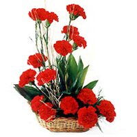Tropical Red 18 Carnations Arrangement of Happiness