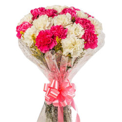 Expressive Collection of White N Pink Carnations