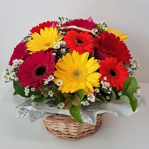 Majestic Basket Decked with 12 Mixed Gerberas