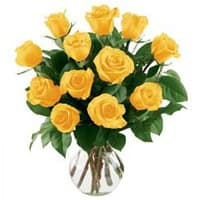 Beautiful Yellow Roses in a Glass Vase