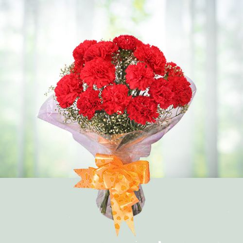 Elegant Display of Carnations in Red Colour
