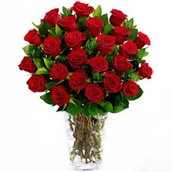 Wonderful Dark Red Roses in a Vase