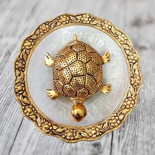 Wish Maximum Age, Stability  N  Determination with Feng Shui Metal Tortoise on Plate