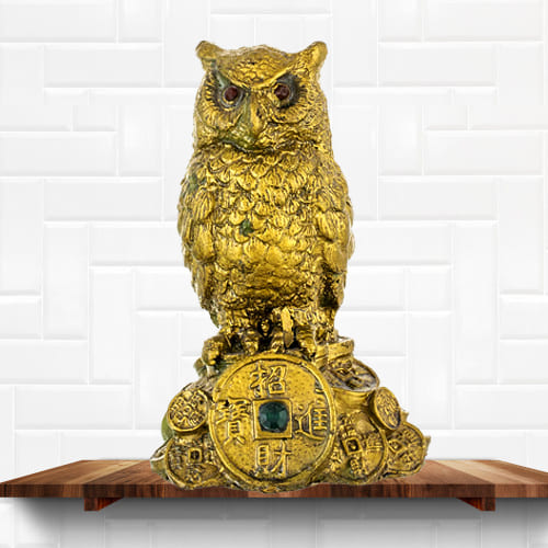 Impressive Feng Shui Owl Showpiece for Money and Wisdom
