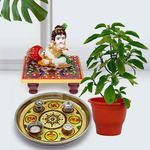 Traditional Puja Gift with Holy Tulsi Plant for Devoted Mom