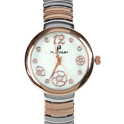 A Marvellous Stone Studded Watch for Women